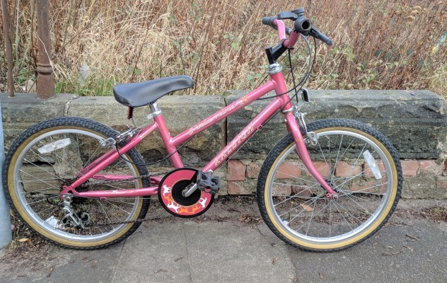 Raleigh pink 20